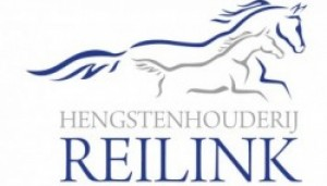 cropped-logo_reilink-1-e1421832387238.jpg